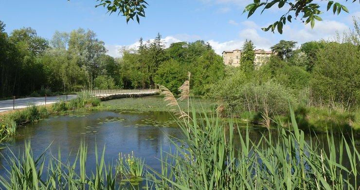 Travaux sur l'étang du Mouchet à Chavannes