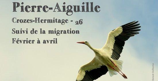 migrateurs-2019-pierre-aiguilles_ARCHE-Agglo.jpg