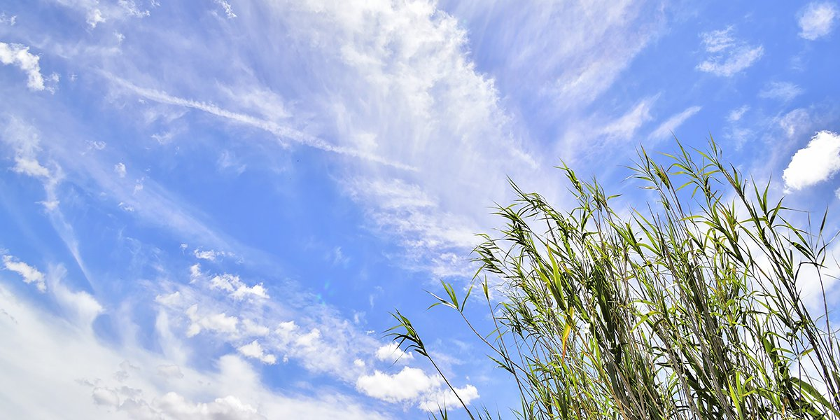 Visuel_climat-air-energie_Pixabay - entreprises.jpg
