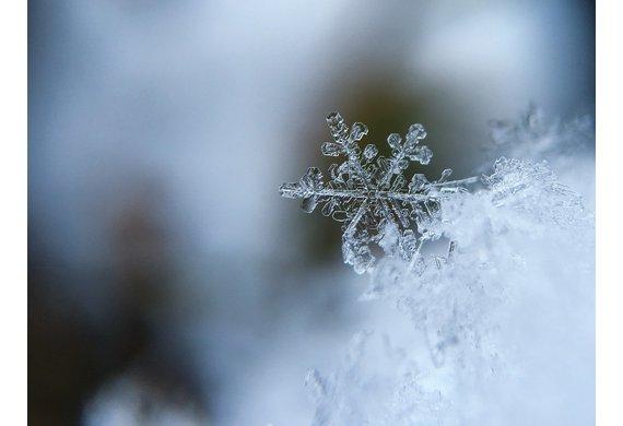 neige-flocon.jpg