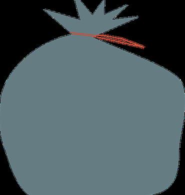 Les Ordures Ménagères résiduelles (OMr)