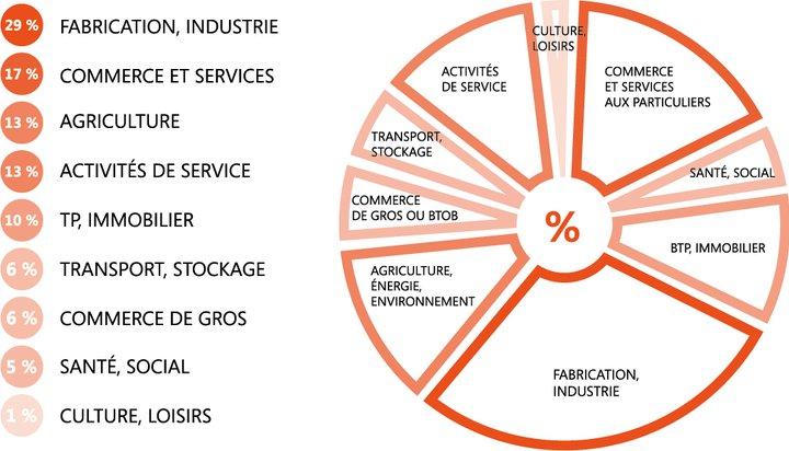 Répartition secteurs activités ECONOMIE ARCHE Agglo.png