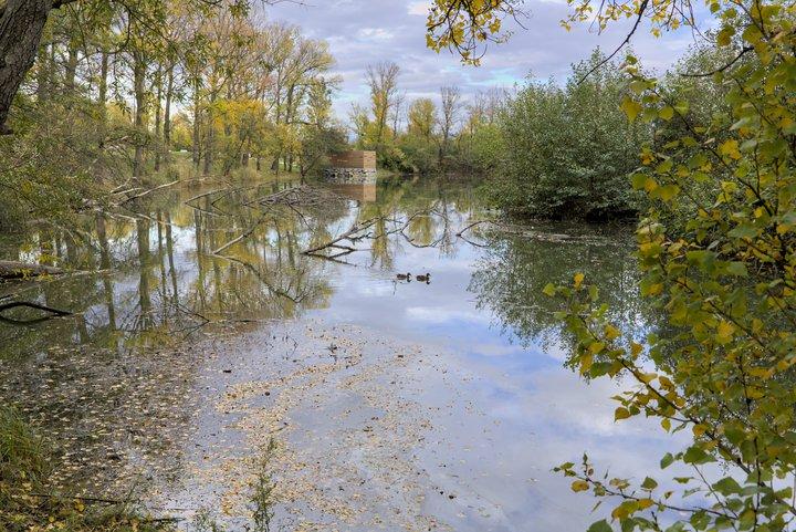 Lac des Pierrelles © Philippe PIEYRE.jpg