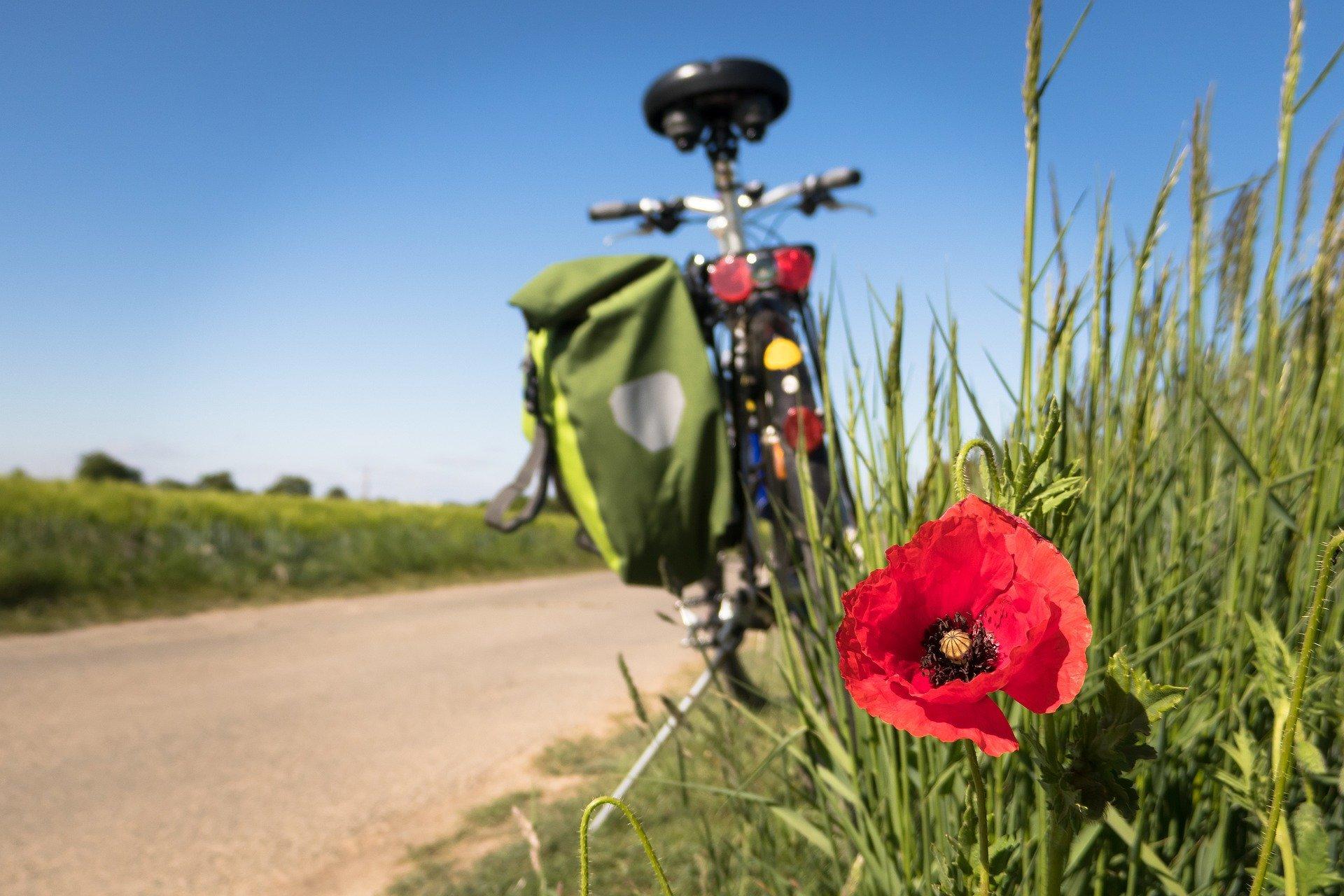 Semaine mobilité vélo  ARCHE Agglo.jpg